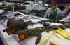 Hãi hùng cá sấu nguyên con, cá mập được bày bán trong siêu thị