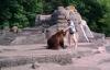 Thót tim người đàn ông liều mạng leo vào chuồng trêu gấu dữ