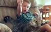 Mèo tấn công chó dữ để cứu chủ