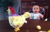 Biểu cảm ngộ nghĩnh của bé khi lần đầu nhìn gà đẻ trứng