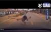 Cậu bé bị xe ô tô hất tung 5m, lộn nhào như phim hành động