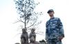 Trung Quốc dạy khỉ đuổi chim, đảm bảo an toàn cho lễ diễu binh 3/9