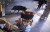 Video: Lợn rừng đuổi người, gây náo loạn đường phố