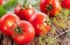Những thực phẩm giải độc cơ thể hiệu quả sau Tết