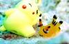 """Sên biển giống hệt Pikachu khiến dân Nhật """"phát cuồng"""""""