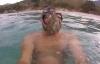 Bạch tuộc bám vào mặt thợ lặn không chịu rời