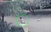 Chủ nhà bất lực đuổi theo hai tên cẩu tặc giữa phố Sài Gòn