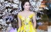 Giải trí - Nhật Kim Anh bị tai nạn xe hơi khi đi diễn ở Bến Tre