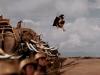 Phim Tết Giáp Ngọ 'Cuộc chiến với chằn tinh' tung trailer như Hollywood