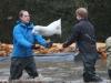 Hoàng tử Anh bì bõm cứu trợ lũ lụt