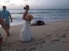 Rùa biển 'khủng' đẻ trứng ngay tại lễ cưới