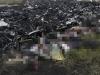 Nhân chứng MH17 kể lại giây phút rơi máy bay kinh hoàng