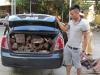 700kg gỗ trắc lậu bị thu giữ trên đường vận chuyển