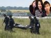 Thúc đẩy đưa thi thể 3 mẹ con người Việt trong vụ MH17 về nước