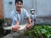Đổ xô xem 'cá sấu dị dạng' tại Vĩnh Long