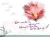 Lời chúc ý nghĩa ngày 20/11 dành cho thầy cô giáo