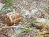 Đào cọc làm chuồng trâu, phát hiện hố chứa mìn