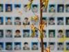 Học sinh sống sót sau thảm họa chìm phà Sewol cố tự tử