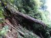 Núi nứt, hàng trăm người dân sống trong nguy hiểm