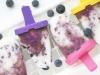 Cách làm kem que việt quất đơn giản và hấp dẫn ngay tại nhà