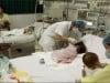 Sự thật thông tin ăn vải nhiễm virus viêm não Nhật Bản