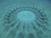 Giải mã hình thù kỳ dị bí ẩn dưới đáy biển Nhật Bản