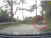 Nam thanh niên suýt ngã xuống vực khi lái xe ga đổ đèo