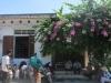 Chấn động xứ Nghệ: Lừa gần 50 hộ dân ôm hơn 2 tỷ bỏ trốn