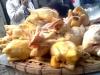 Hãi hùng những thực phẩm 'nhuộm' hóa chất
