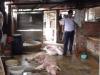 Bắt quả tang cơ sở giết mổ lợn sốt xuất huyết