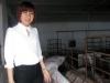 Khởi tố nữ đại gia 8X nổi danh Thái Bình, từng thu 60 tỷ/năm