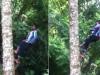 Sững sờ chứng kiến cậu bé đi thẳng đứng trên cây dừa