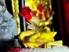 Cúng giao thừa: Cách chọn, luộc và bày gà cúng trên ban thờ đúng cách
