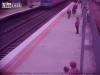 Suýt mất mạng vì qua đường ray khi tàu lao tới