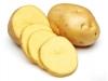 Khoai tây và lợi ích bất ngờ cho sức khỏe
