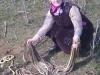 Cụ bà diệt cùng lúc 80 con rắn khi đang làm vườn
