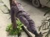 'Tiểu Long Nữ phiên bản nam' nằm ngủ vắt vẻo trên dây thừng