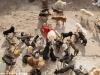 Triệu phú Trung Quốc phá sản vì nuôi hàng nghìn con chó