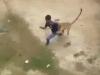 Video: Báo hoang điên cuồng tấn công hàng chục người tại một ngôi làng