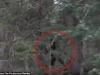 Nhân chứng kể lại phút đối mặt với sinh vật lạ nghi quái vật Bigfoot