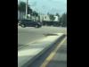 Video: Cá sấu nhởn nhơ trên đường phố Mỹ sau bão Matthew