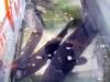 Bắt được cá Lệch quý hiếm dài gần 2m ở Nghệ An