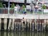 Người đàn ông đánh vợ rồi nhảy xuống kênh Nhiêu Lộc trốn công an