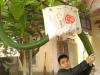 Kỳ lạ quả bầu dài 2m, uốn lượn như con rắn ở Thanh Hóa