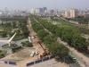 Di dời, chặt hạ 1.300 cây xanh: Bí thư Hà Nội nói gì?