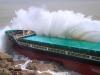 Tìm thấy 8 thi thể thuyền viên trong vụ bão 'nuốt chửng' 9 tàu hàng