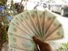 Tài xế đòi tiền lẻ ở BOT Cai Lậy: Ngân hàng Nhà nước sẽ cung ứng nếu có nhu cầu