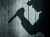 Em trai mang dao đâm chết người chiếm đoạt tiền của chị gái rồi ra công an tự thú