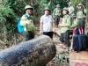 Phó chủ tịch tỉnh nhận hàng chục thư tố cáo phá rừng sau khi công bố Email