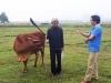 Chủ tịch TP.Thanh Hóa lên tiếng việc chăn thả trâu, bò ở Thanh Hóa phải nộp phí cỏ